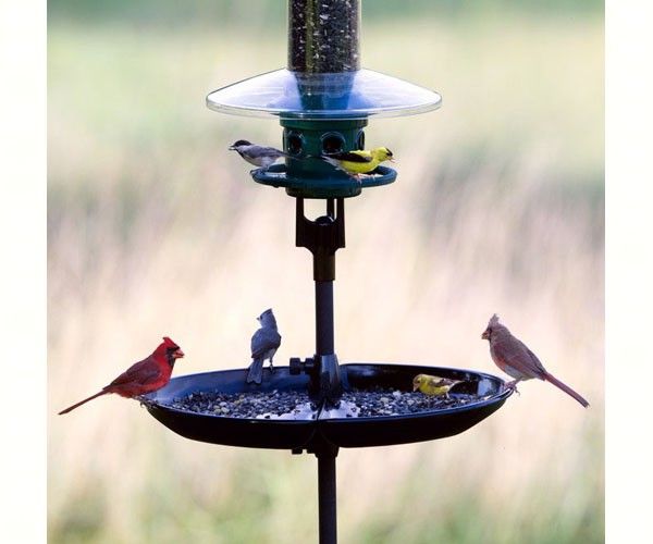 Brome Seed Buster Bird Seed Tray and Catcher-BEST PRICE