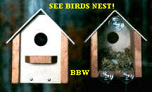 window-view-birdhouse-for-songbirdsWBH4-1200.JPG