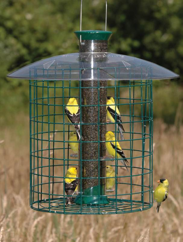 Droll Yankees Thistle Domed Cage Feeder