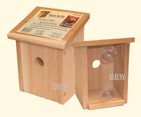 GC-SESC78162windowviewbirdhouse.jpg