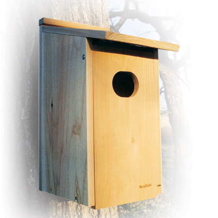 Woodlink wood duck house 4 x3 hole size for Duck house size
