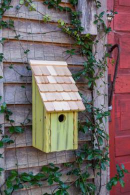BirdHousesbunkhouse192B.jpg