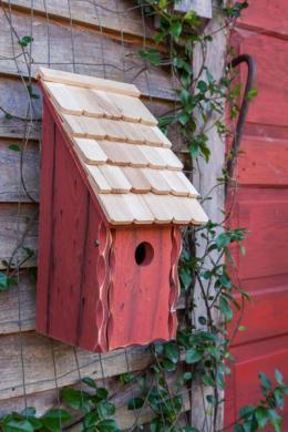 BirdHousesbunkhouse192D.jpg