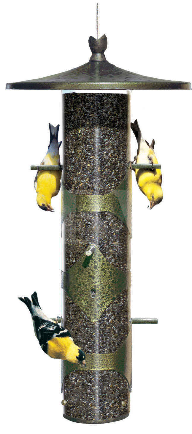 feeders zoom ii seed finch co absolute bird hendricks inc product feed feeder doubleside