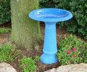 TDI48187 bird bath.jpg